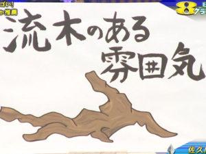 佐久間一行「流木のある雰囲気」01